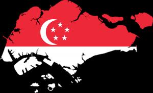 interim-management singapur