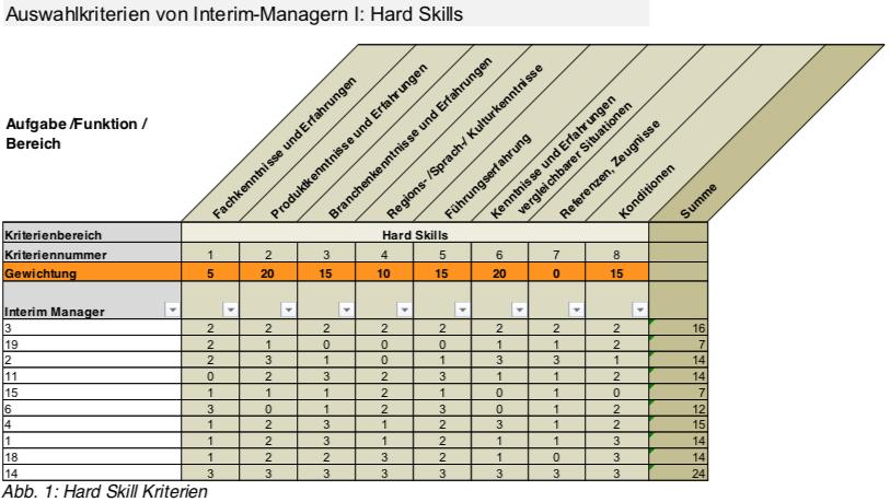 Interim Manager Auswahlkriterium Hard Skills
